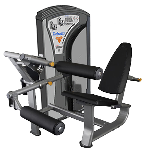 Seated Leg Curl EXP 9027